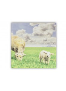 The Grange Collection Sheep Canvas 60x60cm